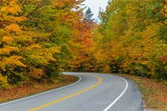 Fall Driving Hazards: What to Watch Out For